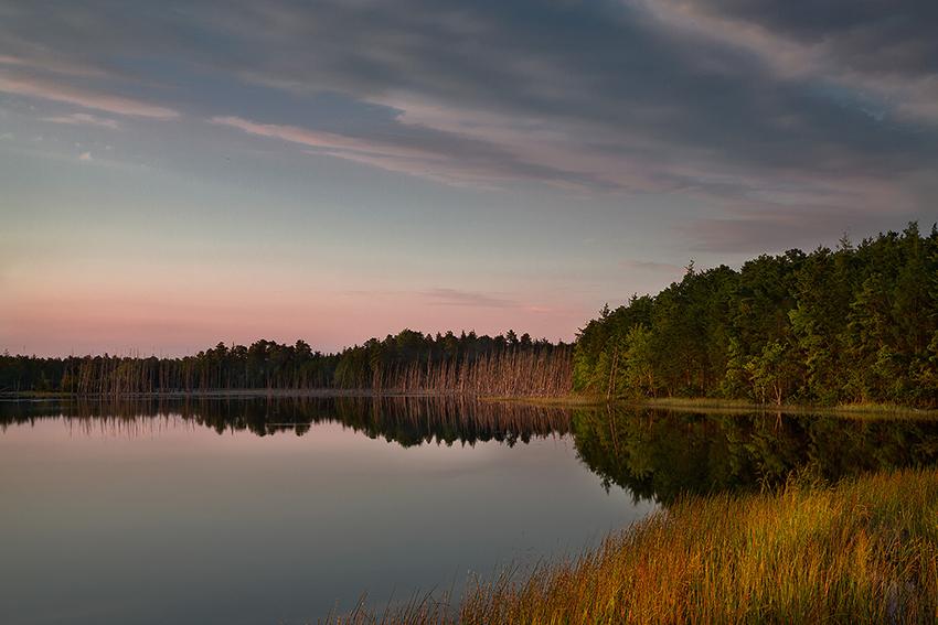 Chatsworth Lake in the Pine Barrens