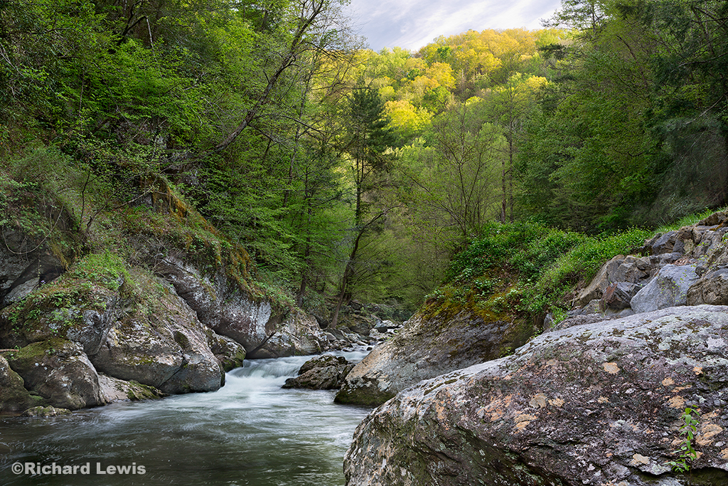 Little River Gorge in Smoky Mountain National Park