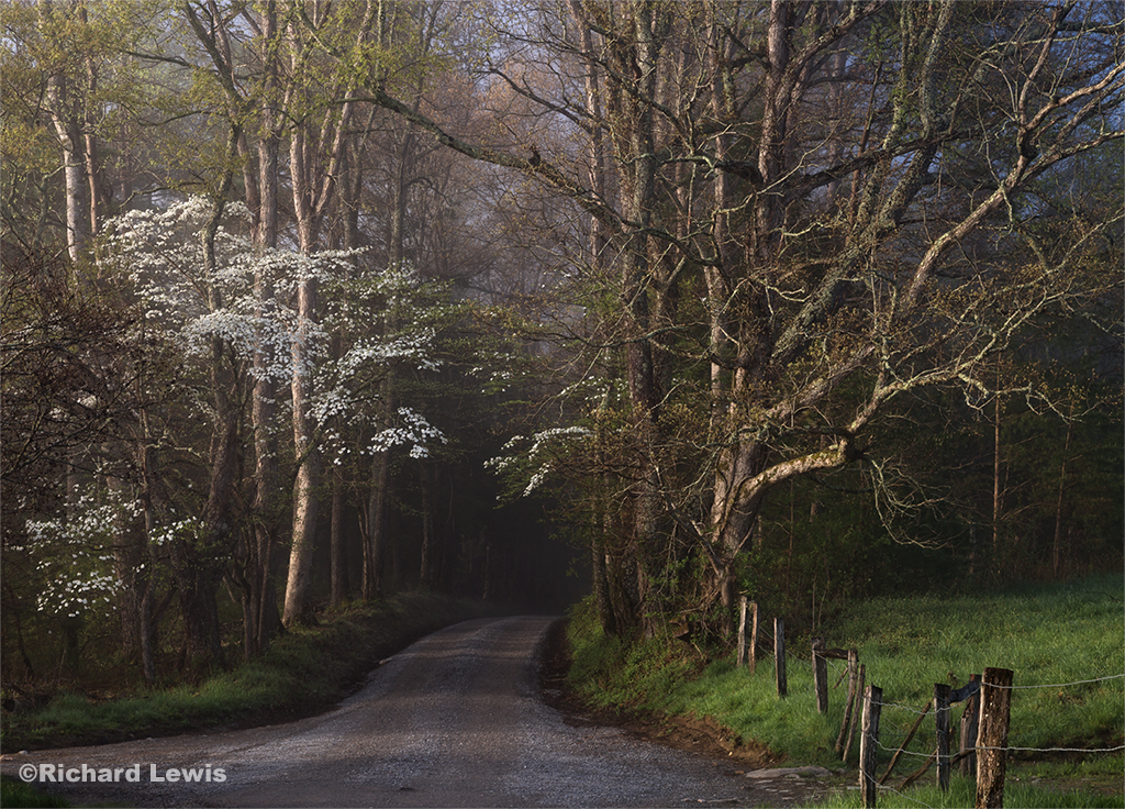Sparks Lane in Cades Cove Smokey Mountain National Park