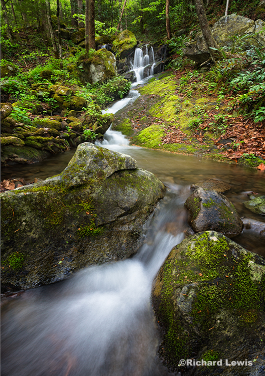 Waterfall by Tremont Creek
