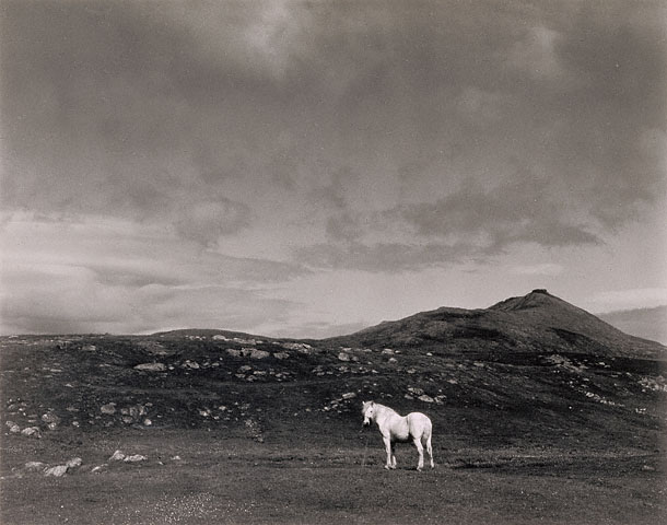 White Horse, South Uist, Scotland by Paul Strand