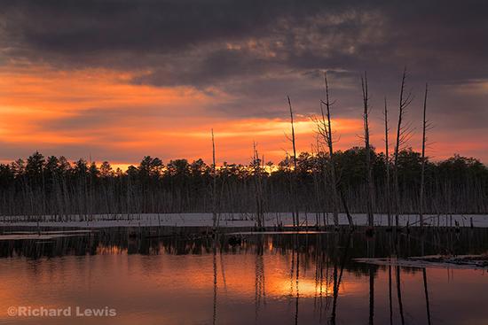Fire in a Winter Sky New Jersey Pine Barrens