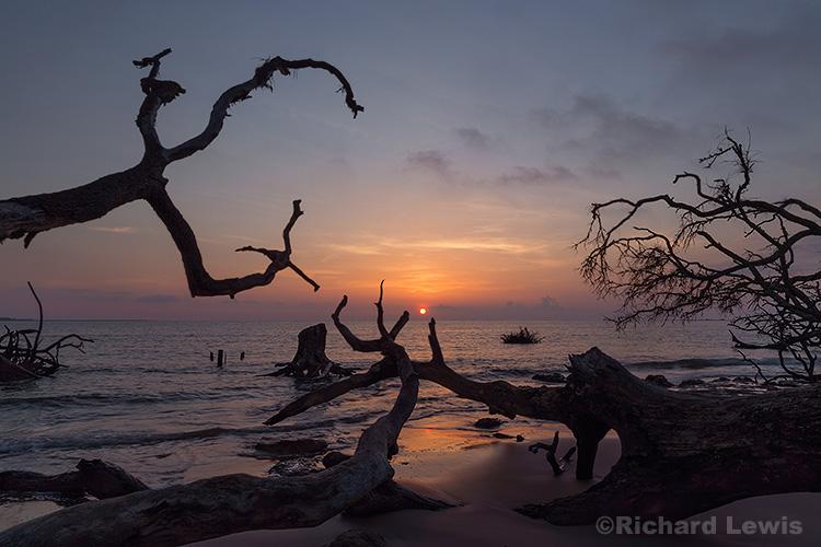 Sunrise on Big Talbot Island by Richard Lewis