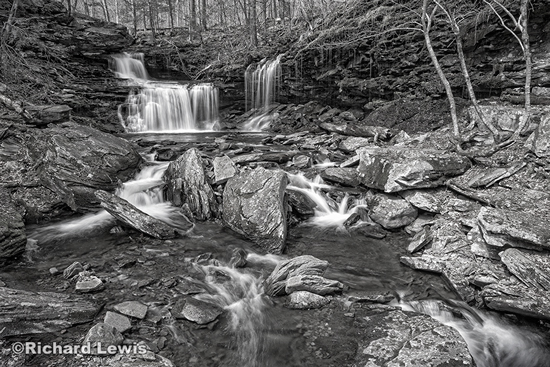 Ricketts Glen in the Spring by Richard Lewis