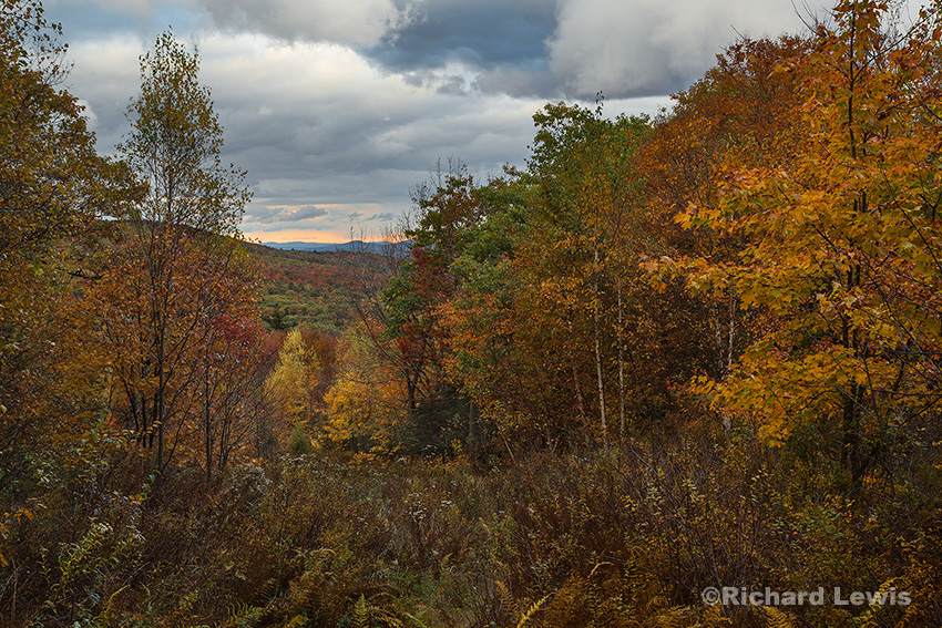 Fall on Mt. Temple by Richard Lewis