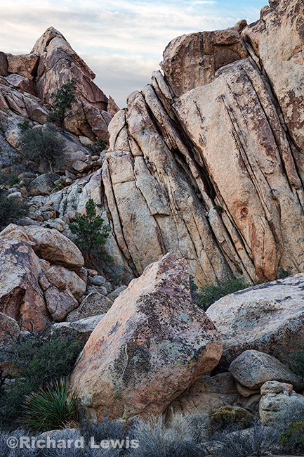 Joshua Tree Rock Formation 1 by Richard Lewis