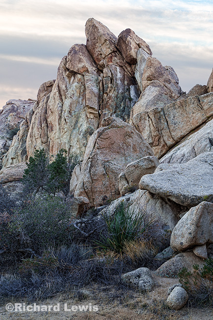 Joshua Tree Rock Formation 2 by Richard Lewis
