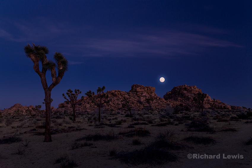 Moonset at Dawn by Richard Lewis