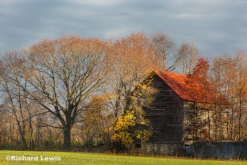 Late Fall in Burlington New Jersey by Richard Lewis