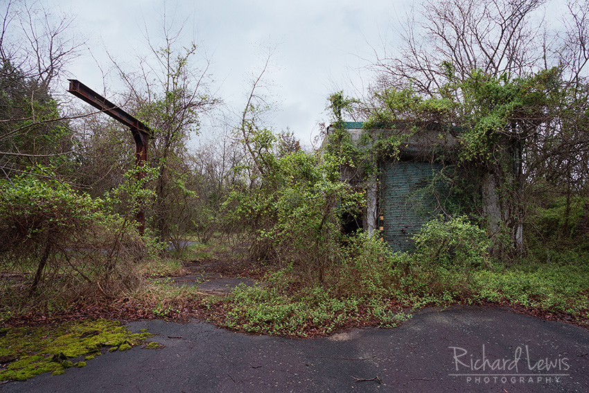 PH-58 Overgrown Nike Missile Warhead Building by Richard Lewis