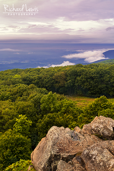 An Evening View in Shenandoah National Park by Richard Lewis