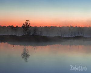 Pinelands Pine Barrens