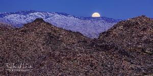 Moonset In Joshua Tree National Park
