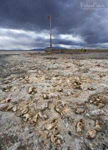 Environmental Fallout On Bombay Beach