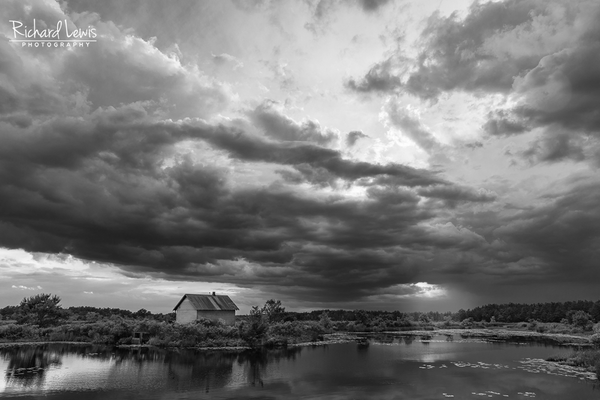 Pinelands Forming Storm Clouds by Richard Lewis