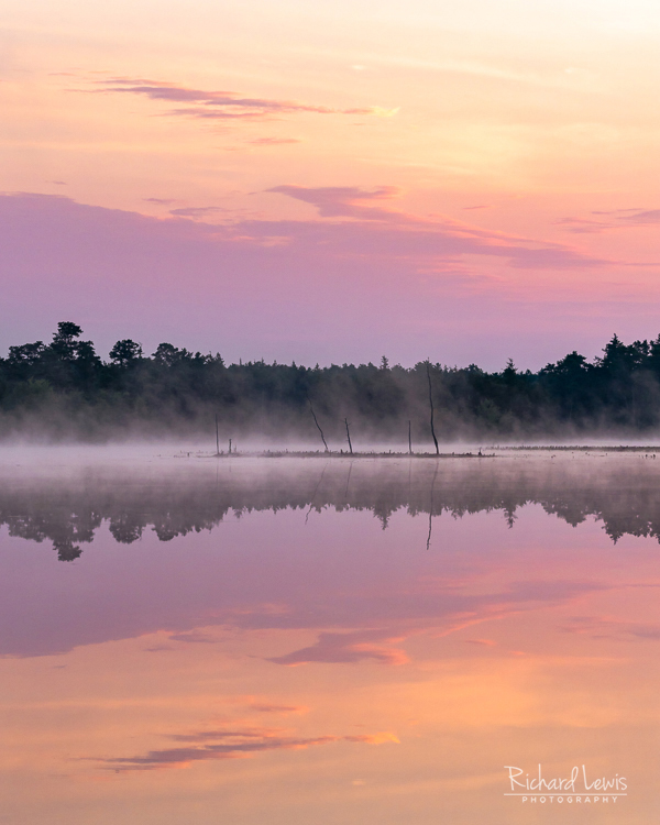 Morning Water Color In The Pine Barrens