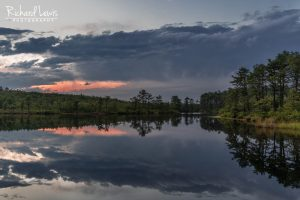 Twilight Comes New Jersey Pinelands