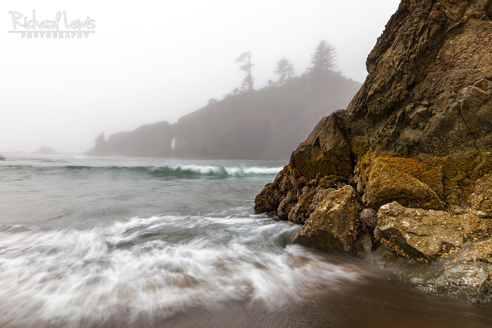Second Beach Fog Olympic National Park