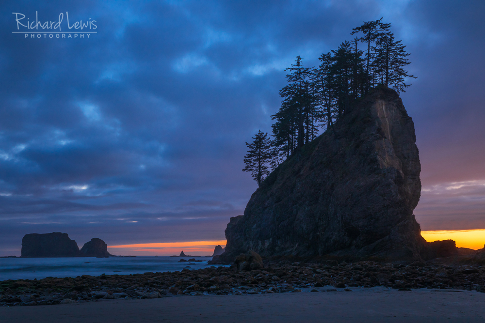 Second Beach Twilight Olympic National Park